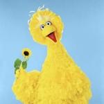 Christian Parents Beware: Sesame Street Will Teach Your Children Yoga