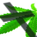 From the cover of The Cross and the Marijuana Leaf by Linda Nathan